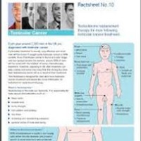 Testosterone Replacement Therapy Factsheet