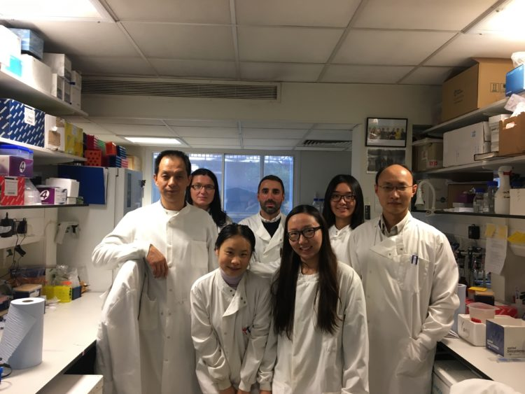 Dr Yong-Jie and his team